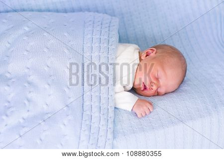 Newborn Baby Boy On A Blue Blanket