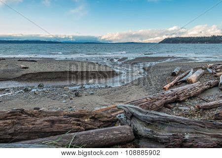 Pacific Northwest Seascape