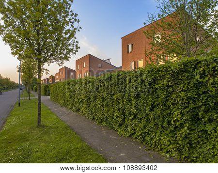 Urban Street With Modern Houses