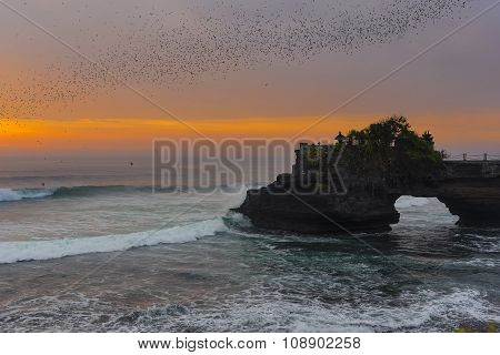 Bats flying over the sea Bali ,Indonesia.