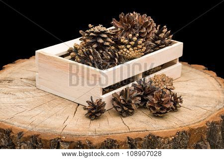 Pine cones in box
