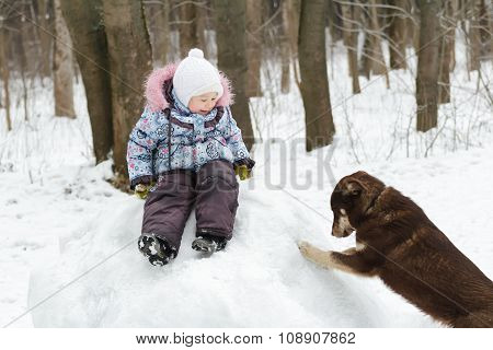 Preschooler girl playing in winter park on snowy hill with best animal friend
