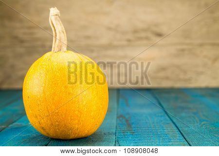 Fresh Yellow Pumpkin On Blue Wooden Background