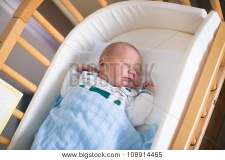 Newborn Baby Boy In Hosptal Cot