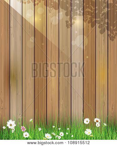 Vector illustration Spring nature background