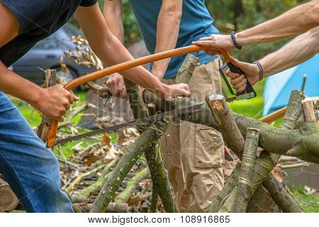 Firewood Sawing On A Campsite