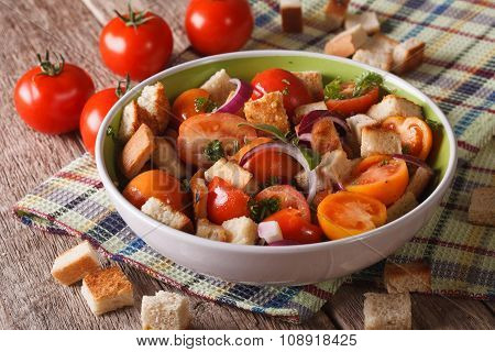 Italian Bread Salad With Vegetables - Panzanella Close-up Horizontal