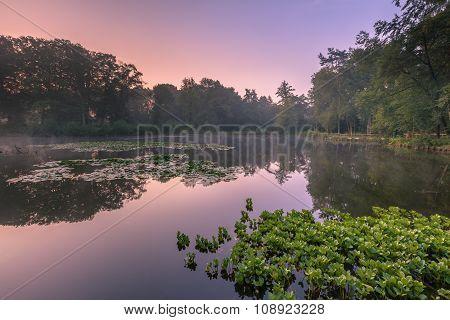 Spring Source Pond