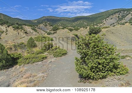 The Path In The Crimean Mountains