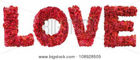 I Love You Of Pink Rose Petals Isolated On White