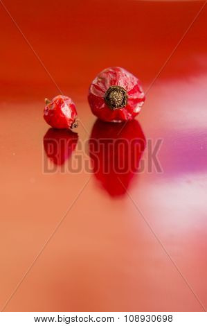 Dried Hips Of Wild Rose On Red Background