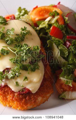 Chicken Parmigiana And Vegetable Salad Macro. Vertical