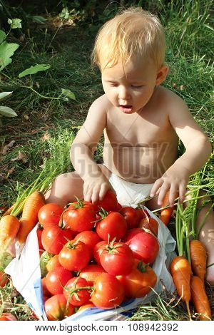 Baby Eats Ripe Tomatoes