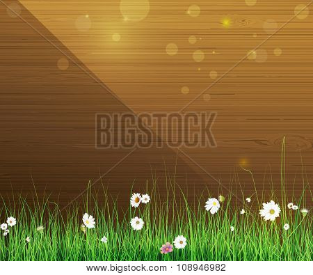 Spring nature background. Green grass- leaf plant, Gerbera- Daisy flowers and sunlight on wood fence