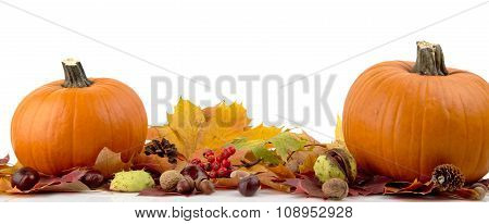 Pumpkins With Autumn Leaves For Thanksgiving Day On White Background