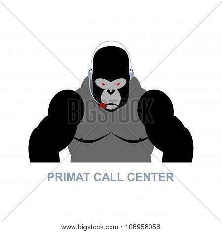 Primat Call Center. Monkey And Headset. Gorilla Responds To Phone Calls. Customer Service From Back