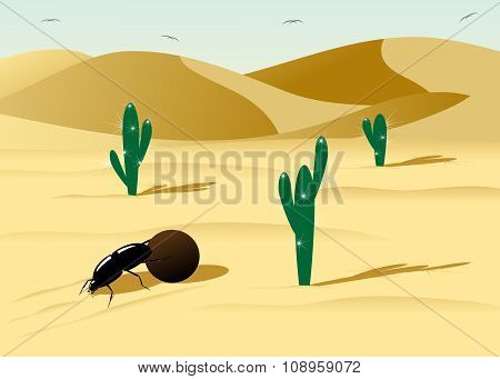 A bug in the desert