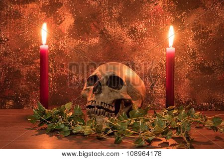 Still Life Painting Photography With Human Skull, Candle And Dried Vine On Wooden Table