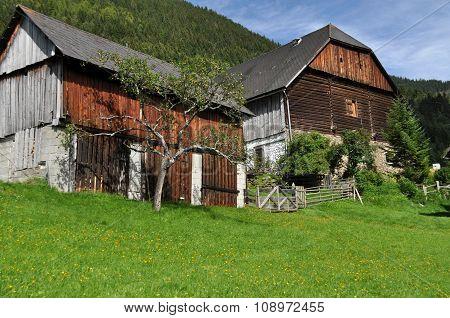Farm At A Mountain, Austria