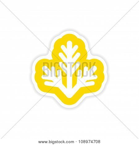 paper sticker on white background fur-tree branch