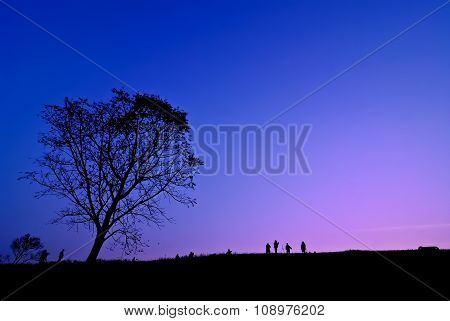 Silhouette Of Young Photographer Taking Picture Near Tree Of Landscape During The Sunset
