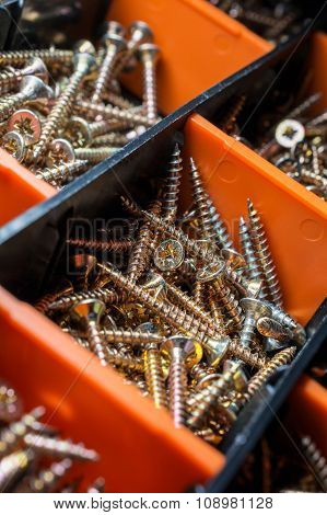 Macro Of A Collection Of Screws In Cells 2