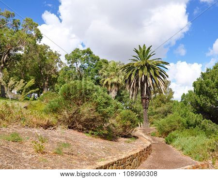 King's Park Botanical Path, Western Australia