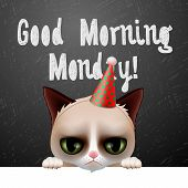 Good morning Monday, with cute grumpy cat poster