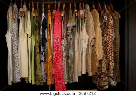 Women'S Pretty Shirts Hanging In Wardrobe Closet