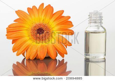 A Glass Phial And An Orange Gerbera