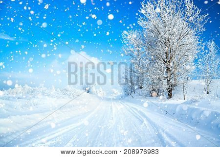 winter landscape with