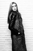 Fashionable Sexy Woman In Fur poster
