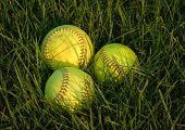stock photo of fastpitch  - Close - JPG