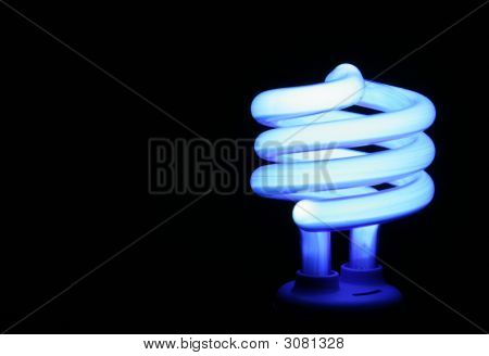 Blue Fluorescent Light