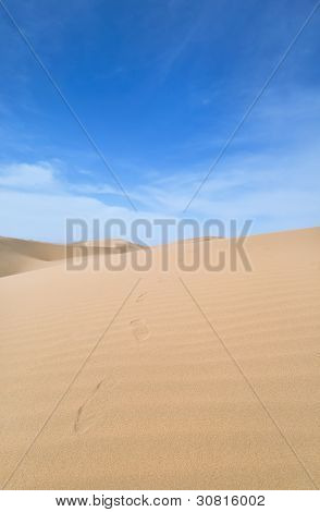 Footstep Trail In The Desert