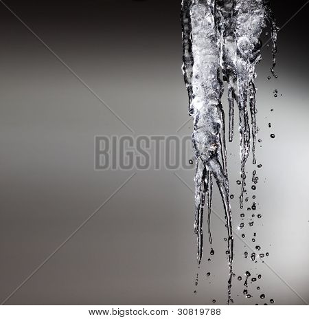 icicles sparkling white melting ice hanging down concept for global warming