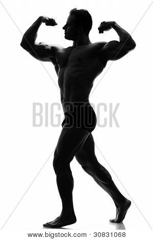Muscle Silhouette