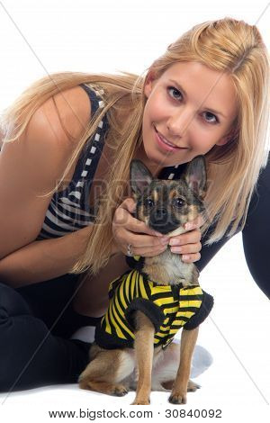 Woman Hold In Hands Small Chihuahua Dog Or Puppy