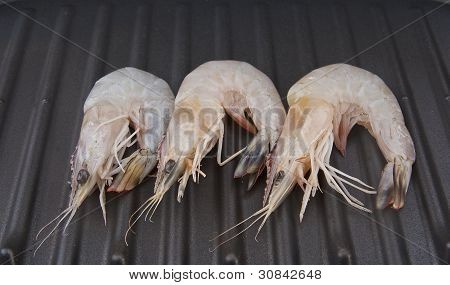 delicious fresh shrimp on a grill