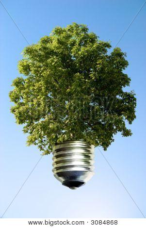 Concepto de eco