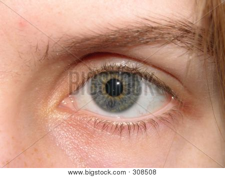 Woman's Grey Blue Eye