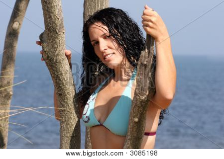 Sexy Bikini Lady At The Shore On A Tree