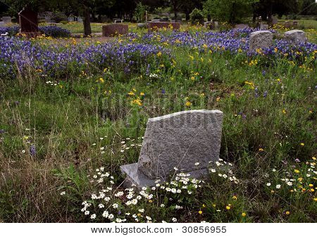 Isolated Tombstone