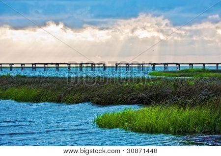 Pea Island Wildlife Area North Carolina