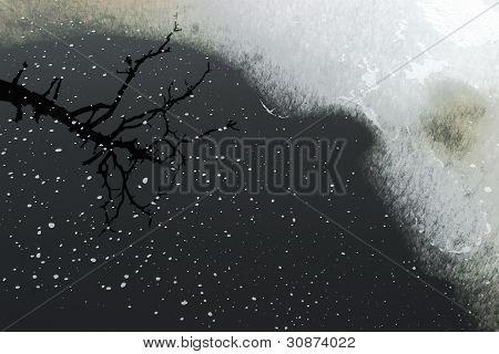 Natur im Moor-Pool