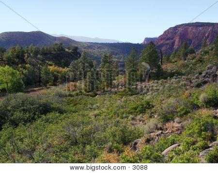 Southern Utah 1