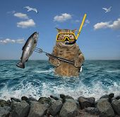 The Cat Underwater Hunter In A Mask And A Snorkel With A Spear Gun Killed A Big Fish In The Sea. poster