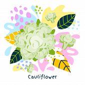 Fresh Cauliflower Vegetable Juice Splash Organic Food Juicy Vegetables Splatter On Abstract Coloful  poster