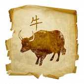 Ox  Zodiac Icon, Isolated On White Background.
