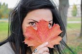 The Girl Covers The Face With A Maple Leaf. Girl Holding Autumn Green Maple Leaf Against The Backgro poster